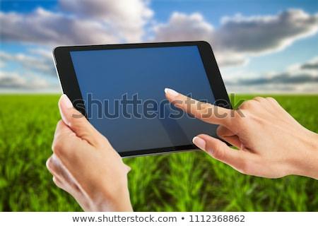 Kobiet rolnik jęczmień wole dziedzinie Zdjęcia stock © stevanovicigor
