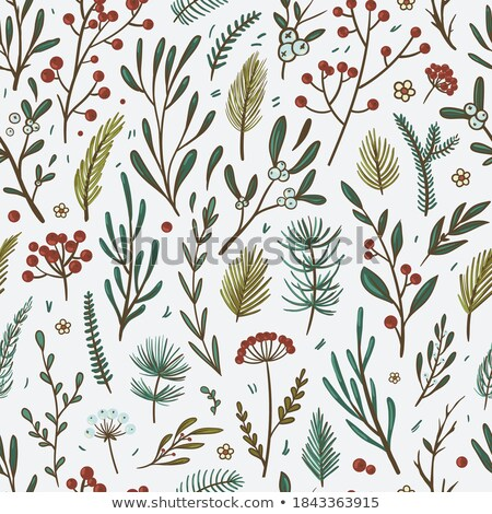 green and red vector seamless pattern with berries and pine branches for christmas and winter stock photo © pravokrugulnik