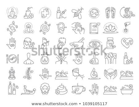 Gyógynövény ikon terv orvosi szolgáltatások törődés Stock fotó © WaD