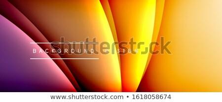 3D absztrakt vektor dinamikus hatás mozgás Stock fotó © pikepicture