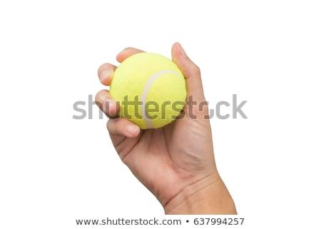 Stock fotó: Kéz · tart · teniszlabda · erős · sportok · grafikus