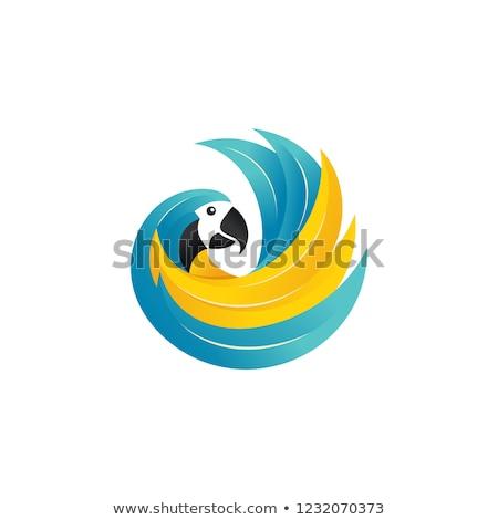 Papağan daire şablon örnek doğa hayvan Stok fotoğraf © bluering