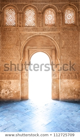 arabic ornated archway Stock photo © smithore