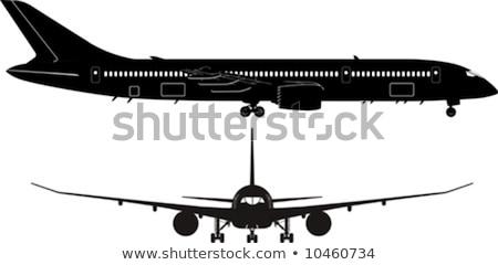 vliegtuigen · silhouetten · groep · alle · verschillend · zwart · en · wit - stockfoto © mechanik