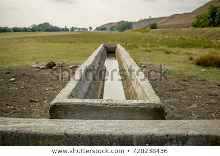 tank on hilly ground Stock photo © prill