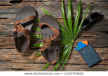 пару сандалии кожа изолированный белый мужчин Сток-фото © RuslanOmega