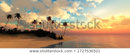 Tree sunrise Stock photo © WaD