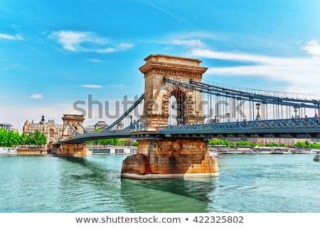 Puente colgante Budapest Hungría manana agua urbanas Foto stock © AndreyKr