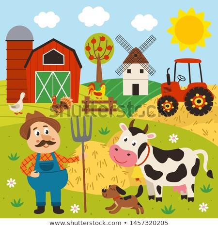 Agricultural Windmills Stock photo © hlehnerer