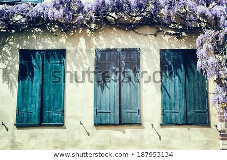 Français fenêtre bleu fenêtres lavande Photo stock © ivonnewierink