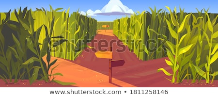 direction signpost stock photo © geribody