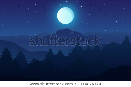 Ilustracja noc lasu pełnia księżyca bezlistny drzew Zdjęcia stock © ankarb