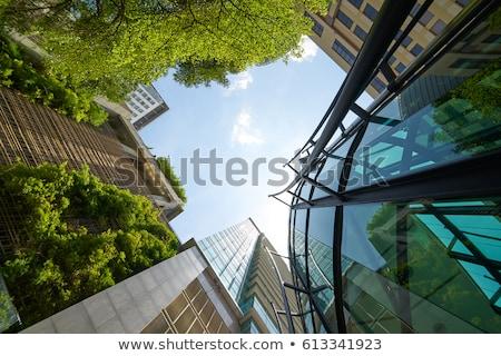 Modern green office building Stock photo © elxeneize