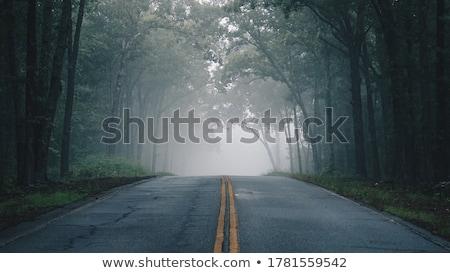 Tranquilo carretera rojo coche conducción lado Foto stock © Hofmeester