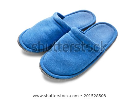 A pair of blue slippers Stock photo © homydesign