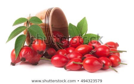Rosehip berries with green leaves Stock photo © olandsfokus