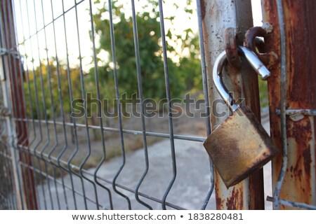 Hangslot keten groene metaal deur Stockfoto © chrisga