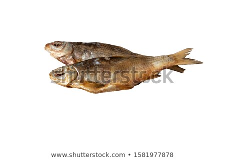Sundried roach isolated on white background Stock photo © BSANI