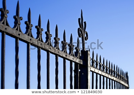 Stock photo: Decorative Steel Gate against blue sky