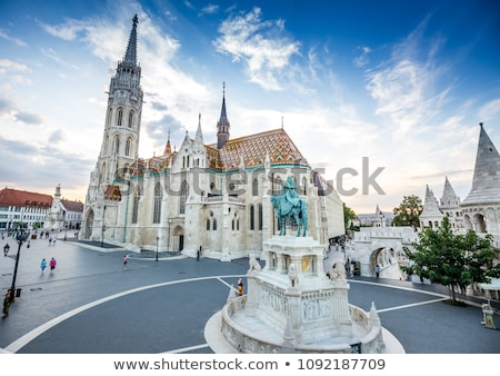 Old Budapest with St. Matthias church Stock photo © AndreyKr