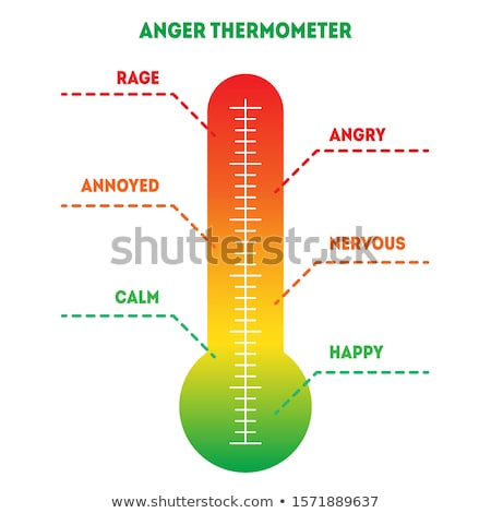 Thermometer Red Vector Icon Design Stock photo © rizwanali3d