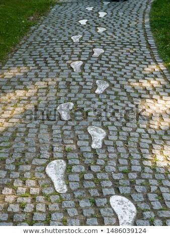 Urme porni iarnă picior Imagine de stoc © Mps197