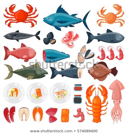 Tintahal tengeri étel hal illusztráció szerkeszthető Stock fotó © ConceptCafe