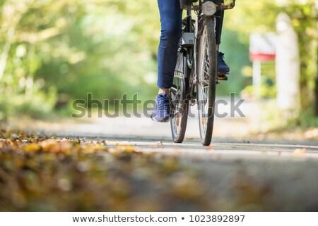 voetganger · fiets · teken · witte · verkeersborden · geschilderd - stockfoto © nneirda