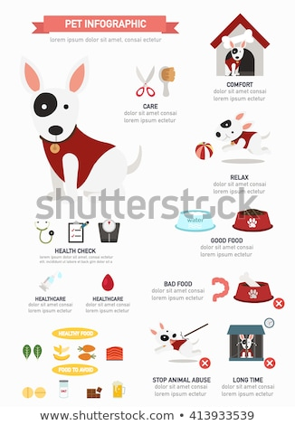 An infographics of a dog Stock photo © bluering