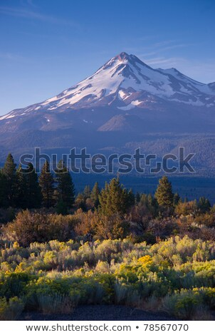 HIgh Ridge Snow Covered Mountain Cascade Range Mt Shasta Stock photo © cboswell