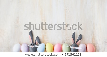 cute · lapin · isolé · blanche · simple - photo stock © bluering