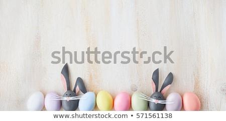 Blue bunny on white background Stock photo © bluering