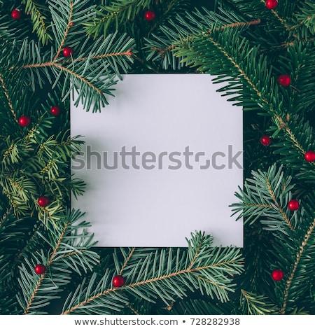 薄緑 クリスマス 紙 コピースペース 包装紙 テクスチャ ストックフォト © Nelosa