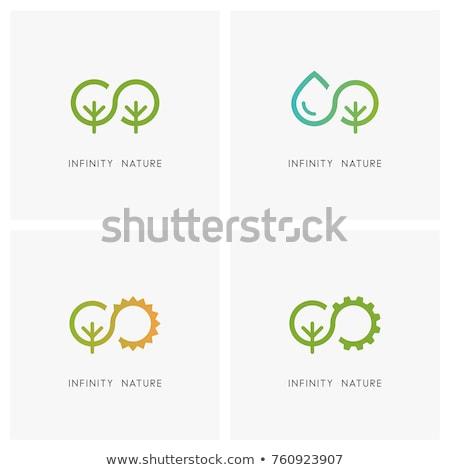 Logo vector eco illustratie groen blad Stockfoto © butenkow