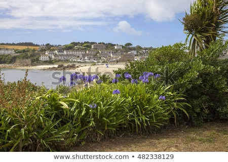 Porthcressa beach, St. Mary's Isles of Scilly, Cornwall UK. Stock photo © latent