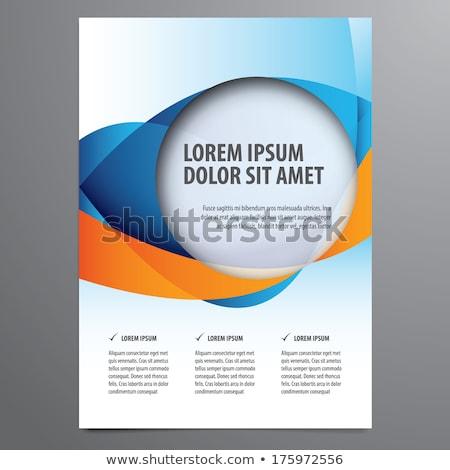 синий · презентация · брошюра · листовка · дизайна - Сток-фото © sarts