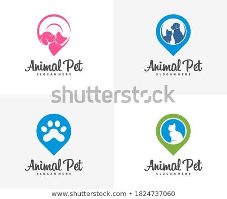 Signe vétérinaire bureau chien médecin médicaux Photo stock © antoshkaforever