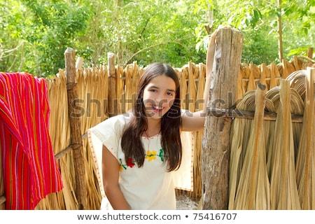 trunks wooden wall in rainforest jungle house Stock photo © lunamarina