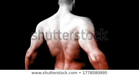 músculos · torso · fundo · humanismo · corpo · brasão - foto stock © Tefi
