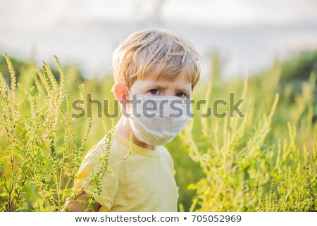 Boy in a medical mask because of an allergy to ragweed Stock photo © galitskaya