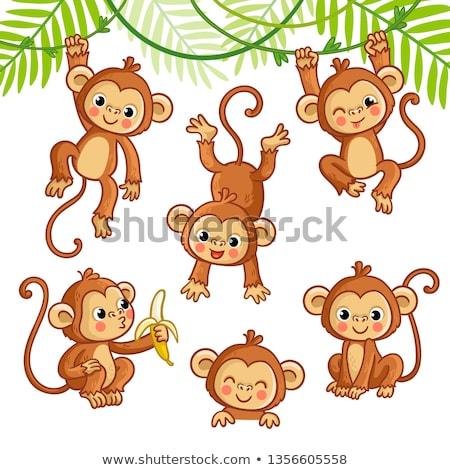 Stockfoto: Ingesteld · aap · karakter · activiteit · illustratie · achtergrond