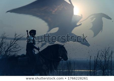 cartoon · cavaliere · cute · equitazione · cavallo · sorridere - foto d'archivio © bluering