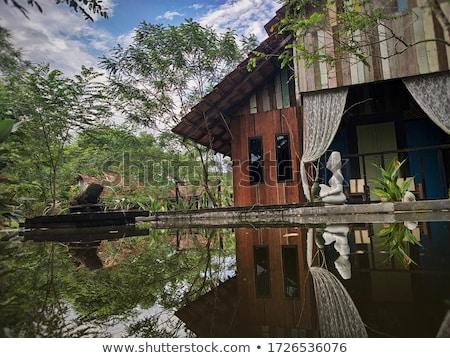 зеленый пруд зданий отель тропические курорта Сток-фото © vapi
