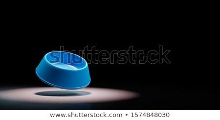Mascotas tazón negro vacío azul plástico Foto stock © make