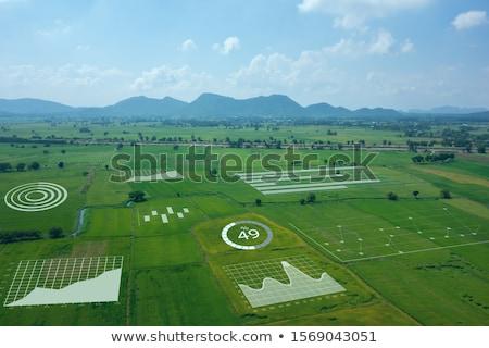 Zdjęcia stock: Duży · pracy · pole · pszenicy · niebo · charakter · dziedzinie
