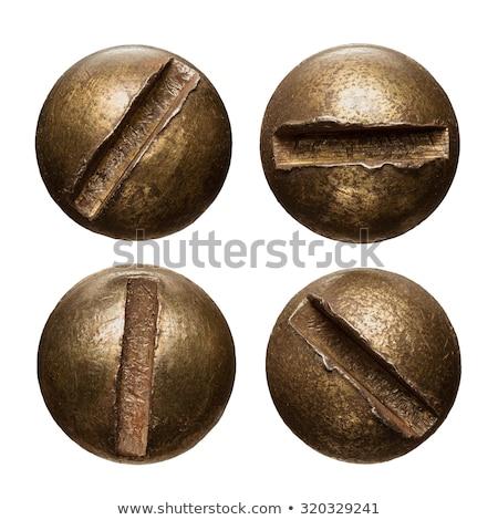 Rusty old screw stock photo © vtorous