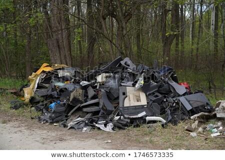 garbage dump 02 stock photo © lianem