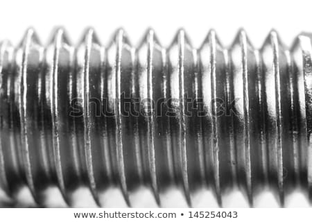 big threaded bolt close-up Stock photo © Mikko