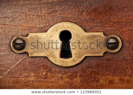 closeup weathered keyhole on a wooden door  Stock photo © inxti