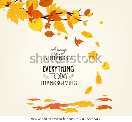 Elegant Autumn Tree card . vector illustration  Stock photo © carodi